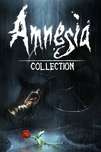 Amnesia: Collection playone.club